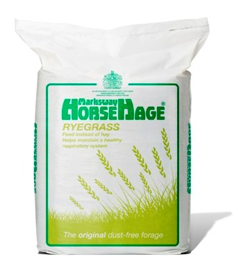 HORSEHAGE GREEN RYEGRASS-0