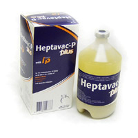 HEPTAVAC P PLUS 500ML-146