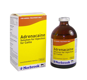 NORBROOK ADRENACAINE 100ML-0