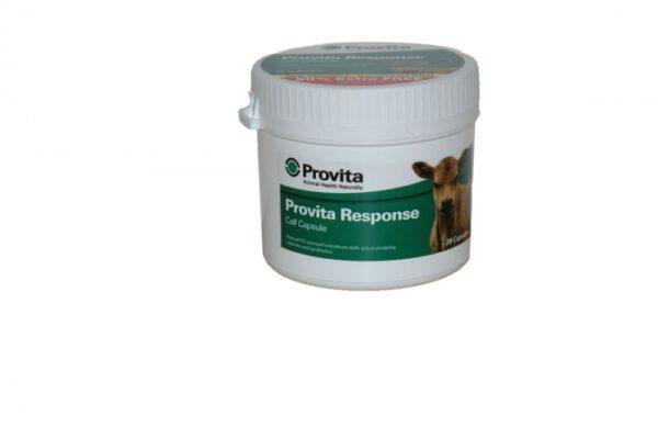 PROVITA RESPONSE 20 capsules-0