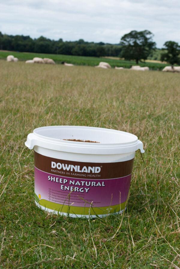 DOWNLAND SHEEP NATURAL ENERGY BUCKET 25KG-6856