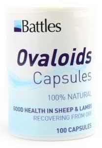 OVALOIDS PK OF 100-0