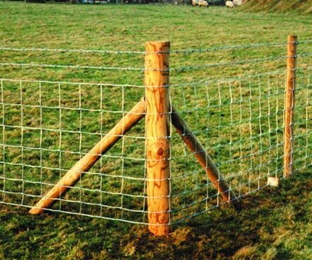Fencing / Wire