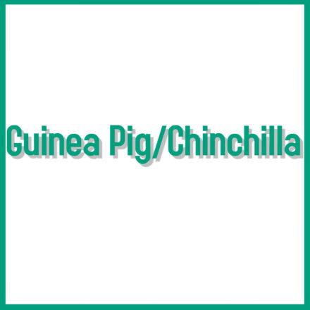 Guinea Pig & Chinchilla