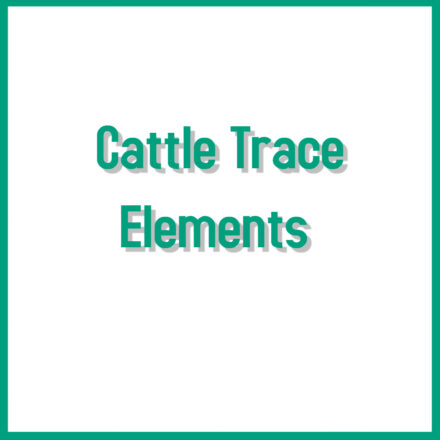 Cattle Trace Elements